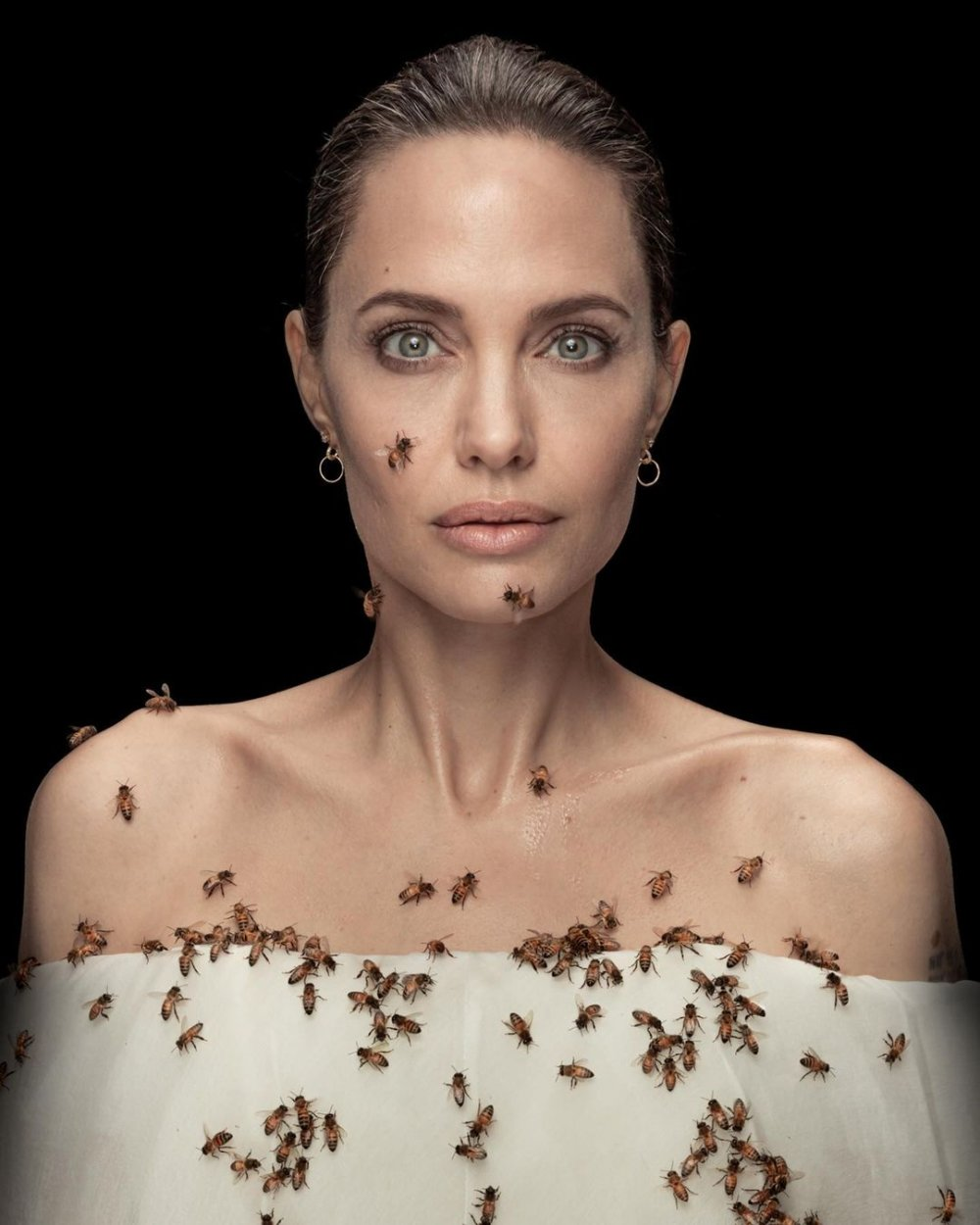 Angelina Jolie, arıcı kadınlara diplomalarını verdi